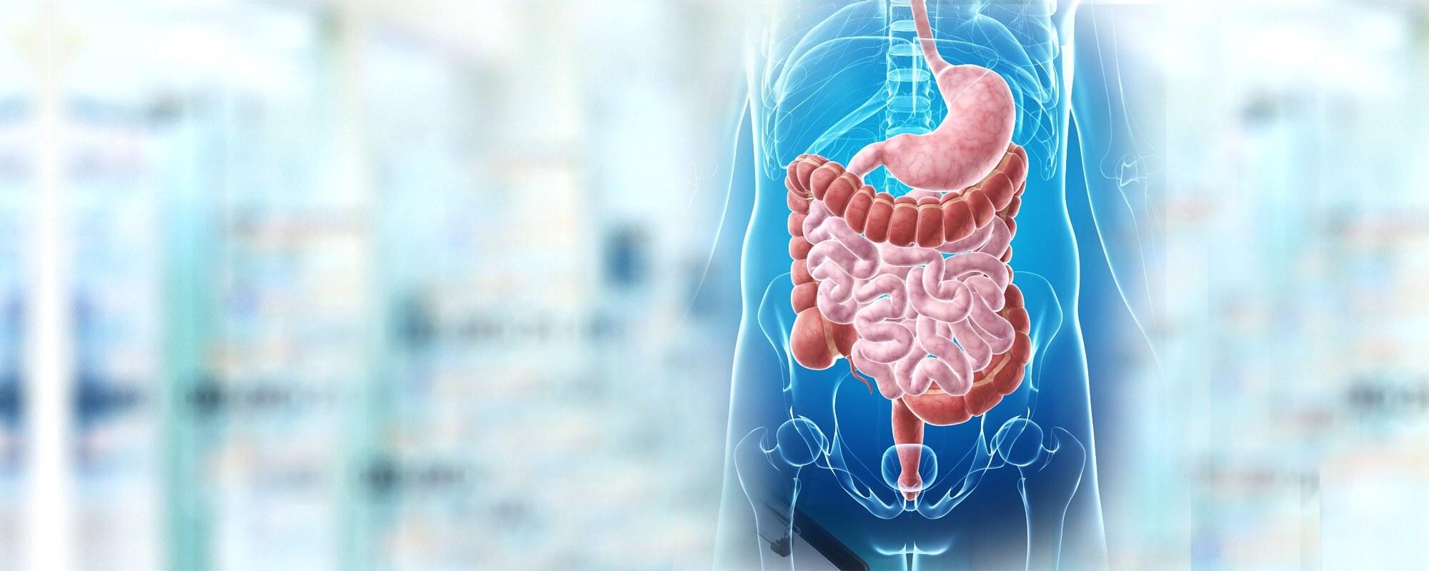 Лечение в Израиле гастроэнтерологических заболеваний