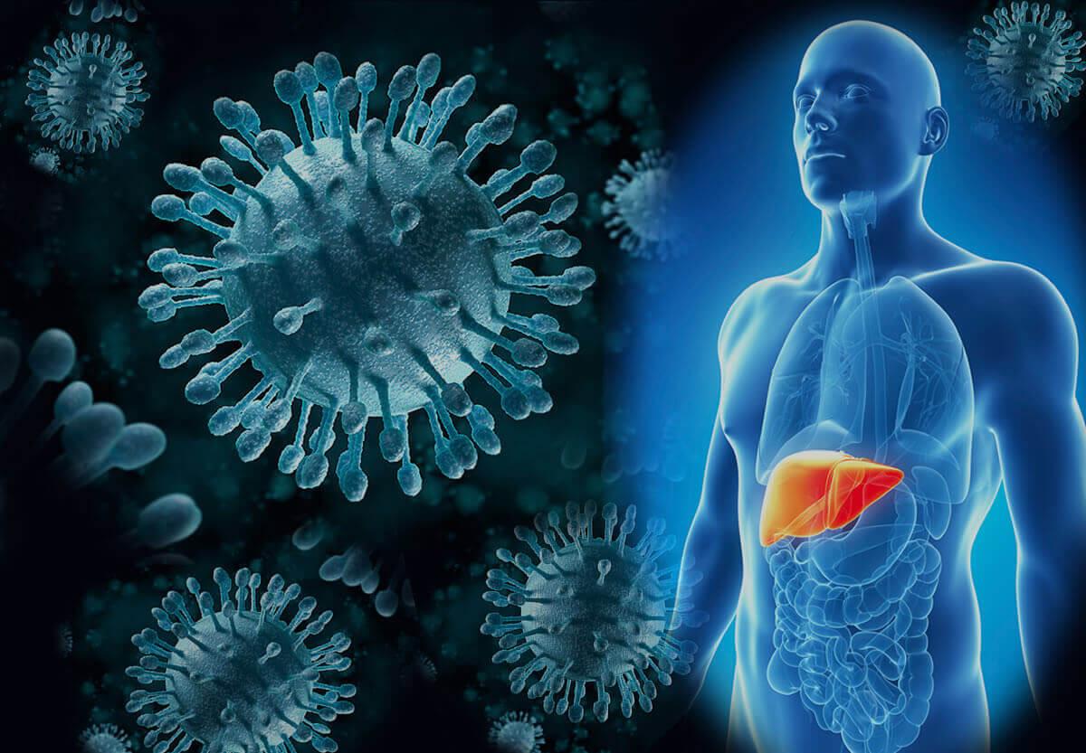 диагностика гепатита B